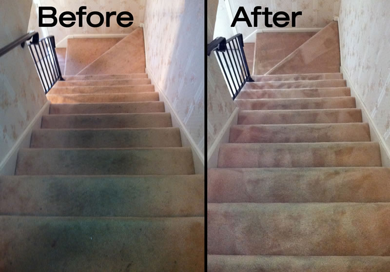 Carpet Cleaning Jersey Steamer Cleaning Service